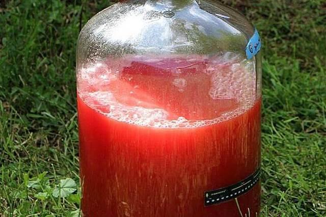 Самогон из арбуза – рецепт браги и технология перегонки