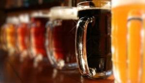 Хранение пива – подходящие условия и сроки для разных видов