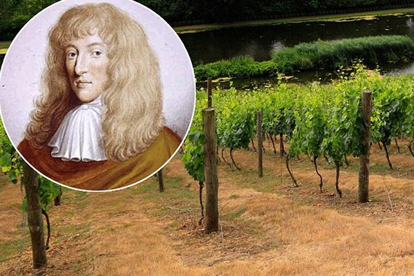 Шампанское Вилаш: описание, история и виды марки