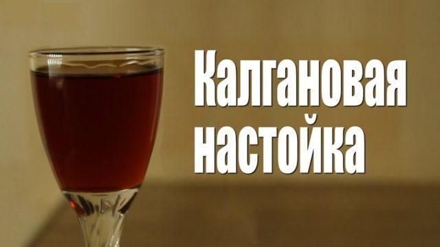 Калгановка – рецепт настойки корня калгана на водке (самогоне)