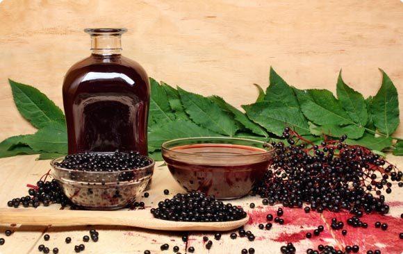 Домашняя питьевая настойка из бузины (черных ягод) – рецепт