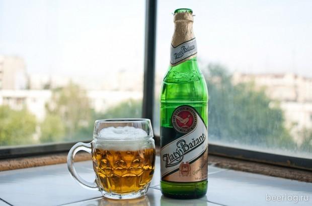 Пиво Златый Базант (zlaty bazant): описание и виды марки