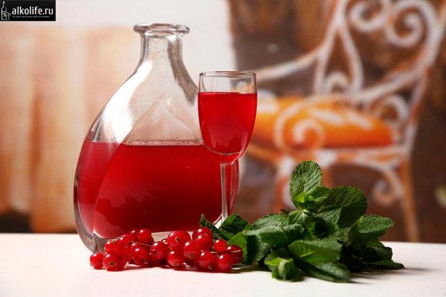 Настойка из брусники на водке (спирте) в домашних условиях