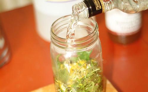 Настойка чистотела на водке (спирте) – рецепт и применение