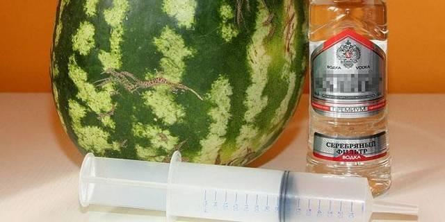 Настойка на арбузе – правильный рецепт на водке и спирте