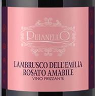 Вино Ламбруско (lambrusco) – итальянский аналог шампанского